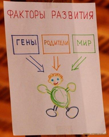 факторы развития