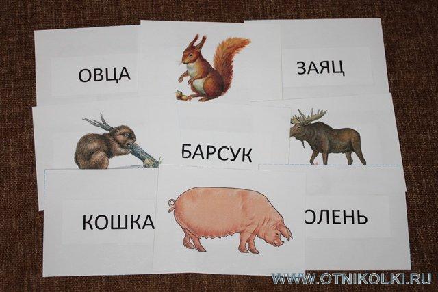 загадка в картинках утка свинья заяц что-то
